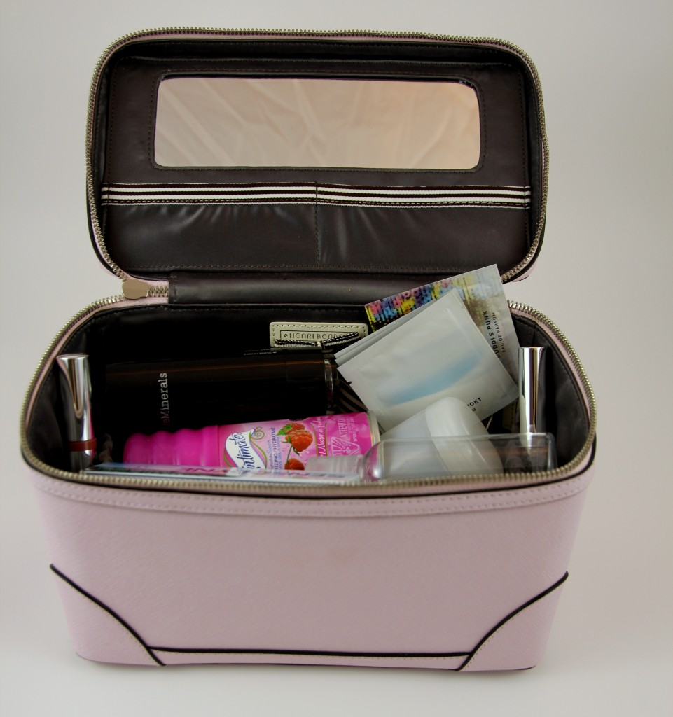 Henri Bendel Train Travel Case | Lady in Violet