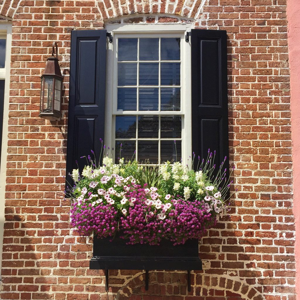 Charleston Window Box with purple flowers
